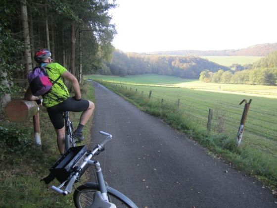 Between the Diemelsee and Marsberg, the trail follows a diverse valley landscape