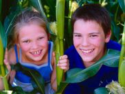 Children have a lot of fun at the corn labyrinth Edersee!