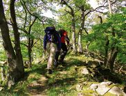 Hiking the 'Lindenberggrat' near the Edersee (photo: Cognitio)