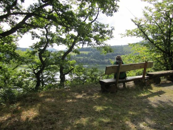 Hiking the 'Urwaldsteig' at the Edersee