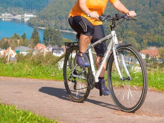 A cyclist riding near the Diemelsee