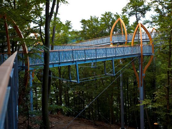 The tree top walk at the Edersee