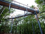 The huge structure allows for walking among the tree tops