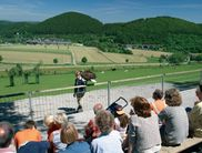 Bird of prey demonstrations in the Wildlife and Leisure Park Willingen